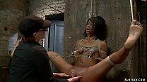 Ebony is oiled and toyed on hogtie