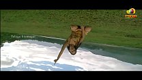 Nithya Movie Songs - Pattapagalu Song - Nithya Menon, Rejith Menon, Revathi, Shw HD video