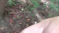 Chubby slut drilled in nature thumbnail