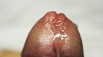 macro close up cock cumming