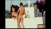 Sin bragas y a lo loco (1982)
