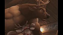 Xmas elk bar, where some reindeer come for fun ... video