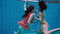 Bubarek and Birtakik enjoy eachother in the pool thumb