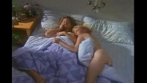 Dana Plato and Landon Hall in Different Strokes porn thumbnail