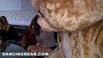 DANCING BEAR - Time For Some CFNM Male Stripper Action! - 69VClub.Com