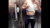 Gato safado de Recife pau duro no elevador