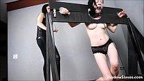 16611 braz-ss preview