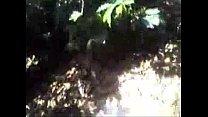 Video:5191