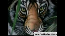 Save China's Tigers: Free Funny Porn Video a6 Thumbnail