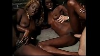 Once in a life time: two black sluts to screw!