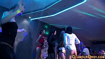 6613 Party whores get fucked preview
