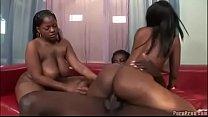 Two Amazing Black Beauty Fucked By Taft Black Guy