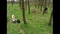 Beim Picknick gefickt - Public sex - German Vorschaubild