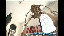 Pegadinhas Picantes-Esqueleto Animado image