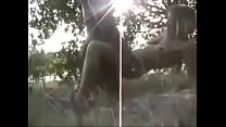 Cuckold Films His Slut French Wife With The African Bull - 9Club.Top