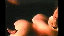 Bucky's 70s Triple X Movie House Trailers: Vol. 3 Vorschaubild