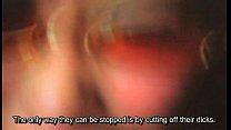 Rape.Zombie.Lust.of.the.Dead.2010.DVDRip
