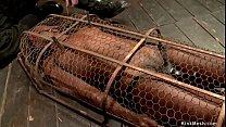 Master zappers ebony slave in cage
