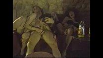 8620 Orgie a la fete foraine - Orgy at the carnival (1987) preview