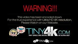 xvideos.com 3714d17987186fec29176e3def5f8117
