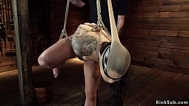 Hairy cunt hottie rides Sybian on hogtie