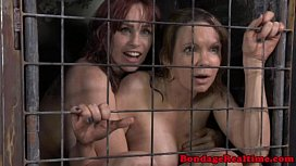Caged Subs To As Their Doms Order