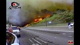 Inc&ecirc_ndio na Amaz&ocirc_nia? O dia que a casa do Buttman queimou na praia de Malibu