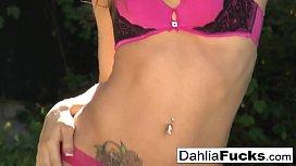 Dahlia'_s Hot outdoor solo