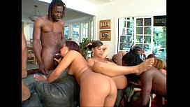 EVASIVE ANGLES Big Phat Wet Ass Orgy with Michelle Tucker