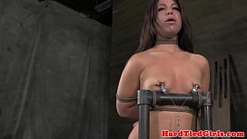 Tormented tied up Mia Gold chair bounded