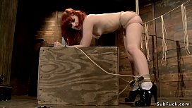 Hairy redhead whipped and toyed hogtie