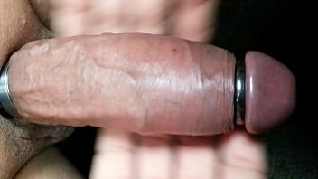 Racoons took my penis Ring make my cock excited and huge to the max