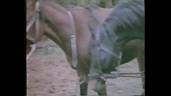 La Perdizione aka Marina'_s Animals (1986)
