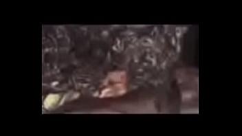 Bondage escorts columbia sc Columbia sc head monster