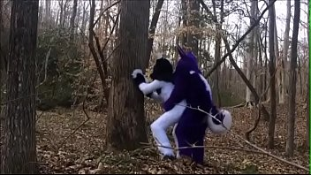 Fursuit Couple Mating in Woods