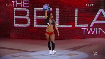 Nikki Bella Vs Paige. Money In The Bank 2015.