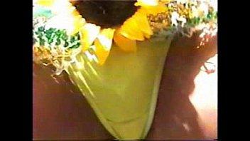 Sex exhibits miami fl - Miami vice carnival 2006 v