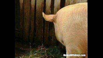 Streaming Video Brunette Lady Farmer Hairy Pussy Barn Fucked - XLXX.video