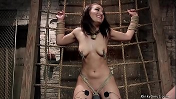Tied ass slave trainee gets anal fucked