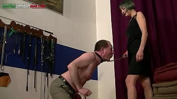The Professionist 3-
