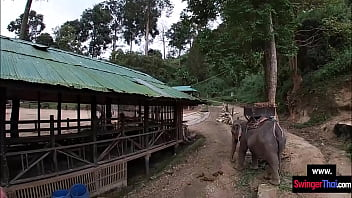 Elephant Ride In Thailand With Amateur Teen Couple Who Had Sex After