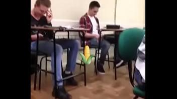 Levando milho