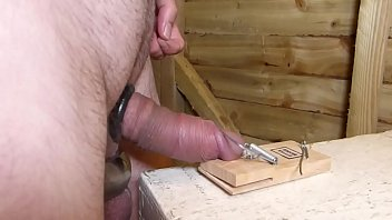 Mouse Trap Cock
