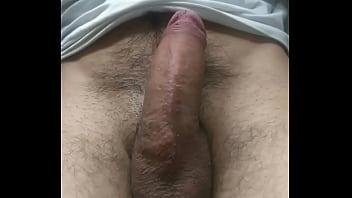 Pornito 4