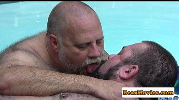 Polar bear cocksucked in the pool