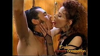 Stallion pleasure Kinky stallion has his throbbing shaft pleasured by a naughty slut