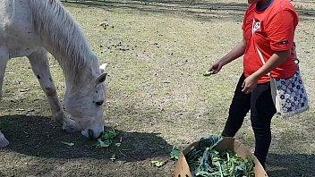 Fiquei toda molhada ao ver o tamanho do membro de um cavalo !!! Queria que meu namorado fosse assim !!! Paty Bumbum, El Toro De Oro preview image