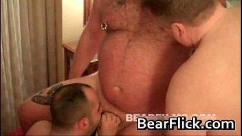 hairy bears gay porn