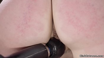 Slave pig cattle prod porn Alt bound slave is zippered