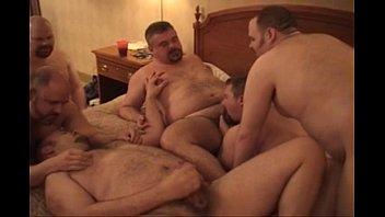 2709257 amazing bears orgy